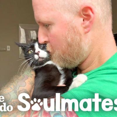 Guy Risks His Marriage For A Stray 3-Legged Cat | The Dodo Soulmates
