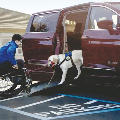 Minivan and Wheelchair-Accessible Vehicle For Service Dogs: Chrysler Pacifica