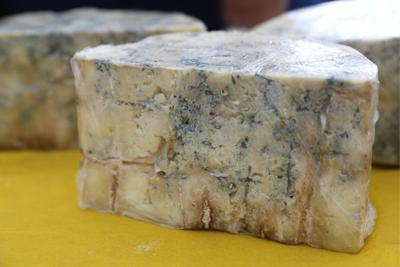Europeans were enjoying blue cheese and beer 2,700 years ago, ancient poop shows