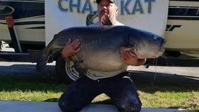 New state record blue catfish caught in Stewart County by Florida man