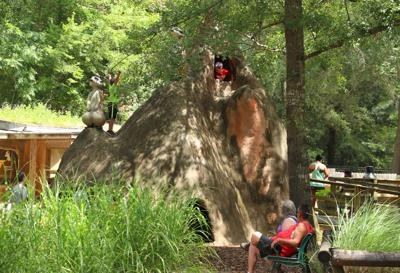 Chehaw loses Association of Zoos and Aquariums accreditation