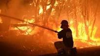 australia fires 1.jpg