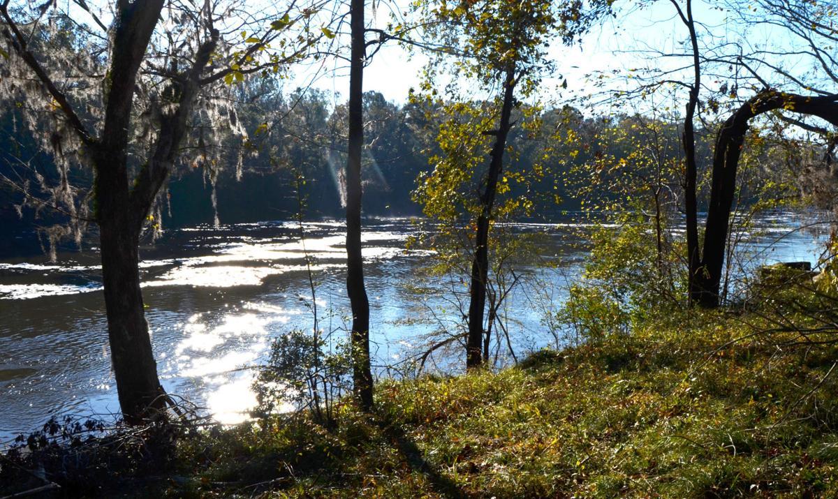 Apalachicola-Chattahoochee-Flint stakeholders honored by Georgia Water Coalition