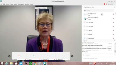 Kathleen Toomey talking during March 17 conference call.jpg