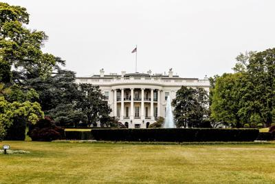Think twice before moving  celebrities off the big screen  and into the White House