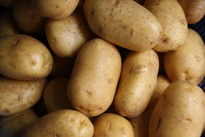 Taco bell- potatoes