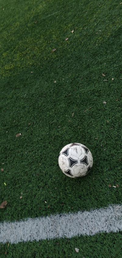 BRIEF: Women's soccer defeats Carbondale 5-0