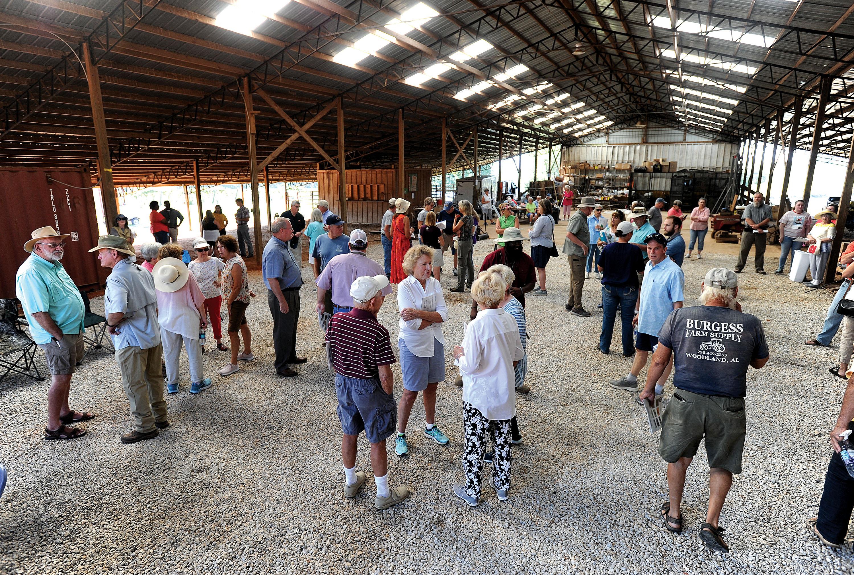 Photos Kiwi Farm Tour In Reeltown Multimedia Alexcityoutlook Com
