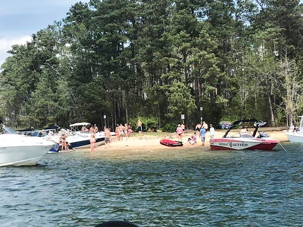 Flocking to Lake Martin6.jpg