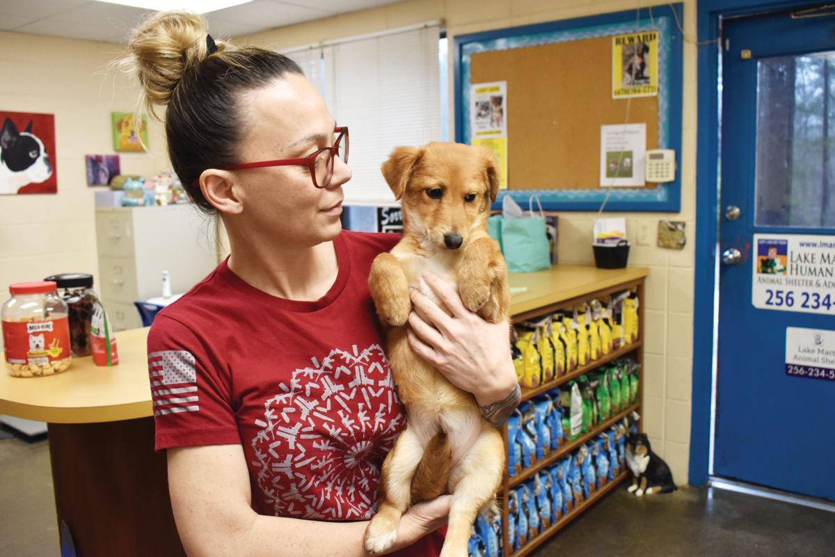 0115 animal shelter3.jpg