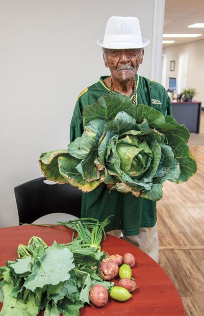 Big Cabbage