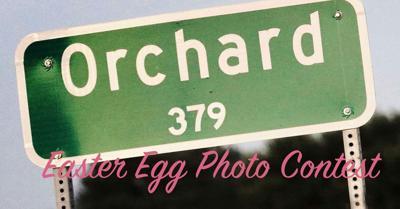 Orchard Easter Egg Hunt