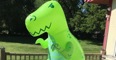 Neligh Dinosaur