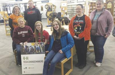 Library and 4-H Partnership