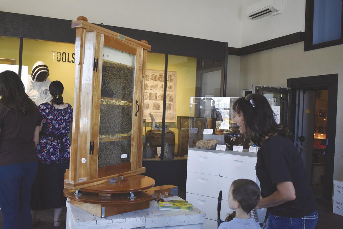 Honeybee Discovery Center