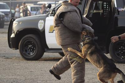 Laws and Paws Music Festival raised more than $4,000 for Orland PD K-9 Unit