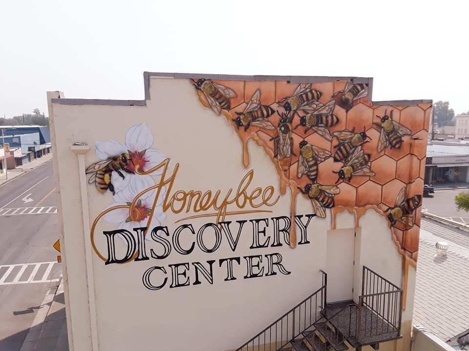Muralist adds bees, blossoms to Honeybee Discovery Center walls