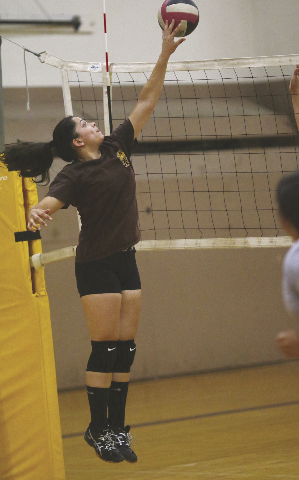 Colusa County Volleyball