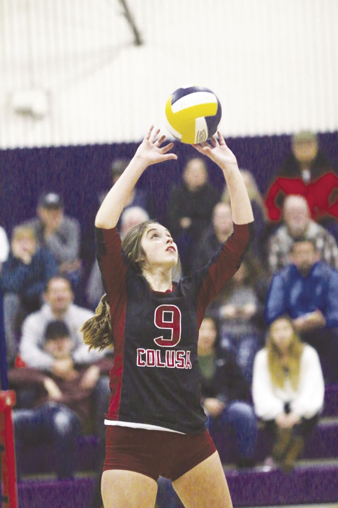 Colusa gets back on the court as defending champs