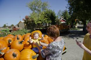 <p>Sadie Cogar, center, of Yuba City, prepares her granddaughter, Olivia Rice for a photo as her daughter, Sara Rice, keeps the camera ready at Bishop's Pumpkin Farm on Monday in Wheatland.</p>
