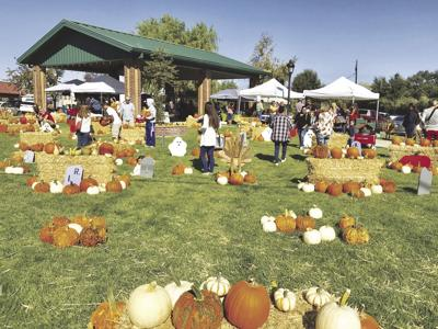 Arbuckle Pumpkin Festival planned for Sunday
