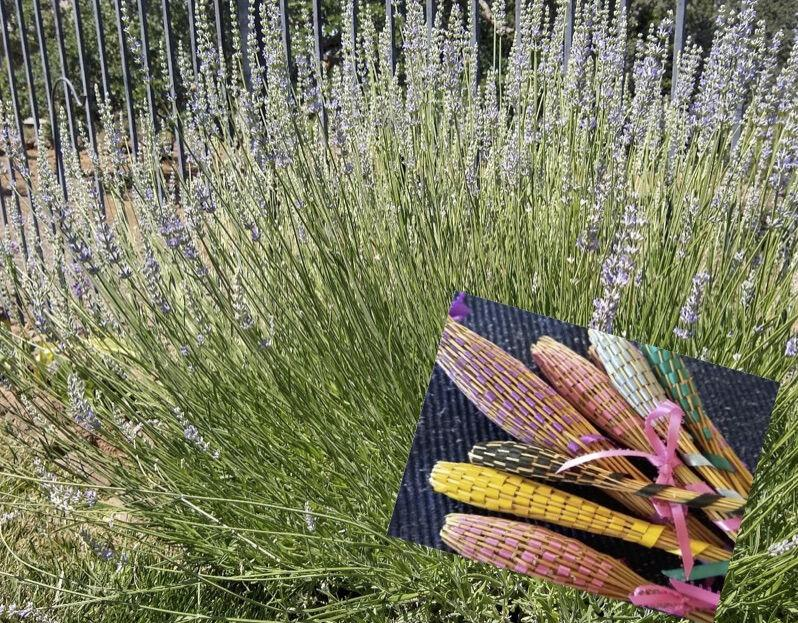 Every Blooming Thing - Fragrant Wandsf of Lavender