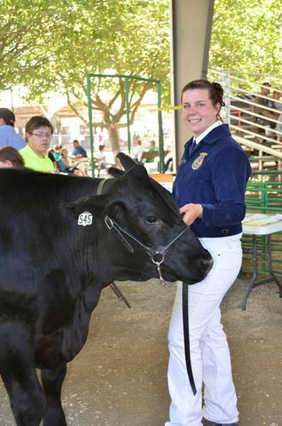 2014 Colusa County Fair: Junior Livestock Auction to be