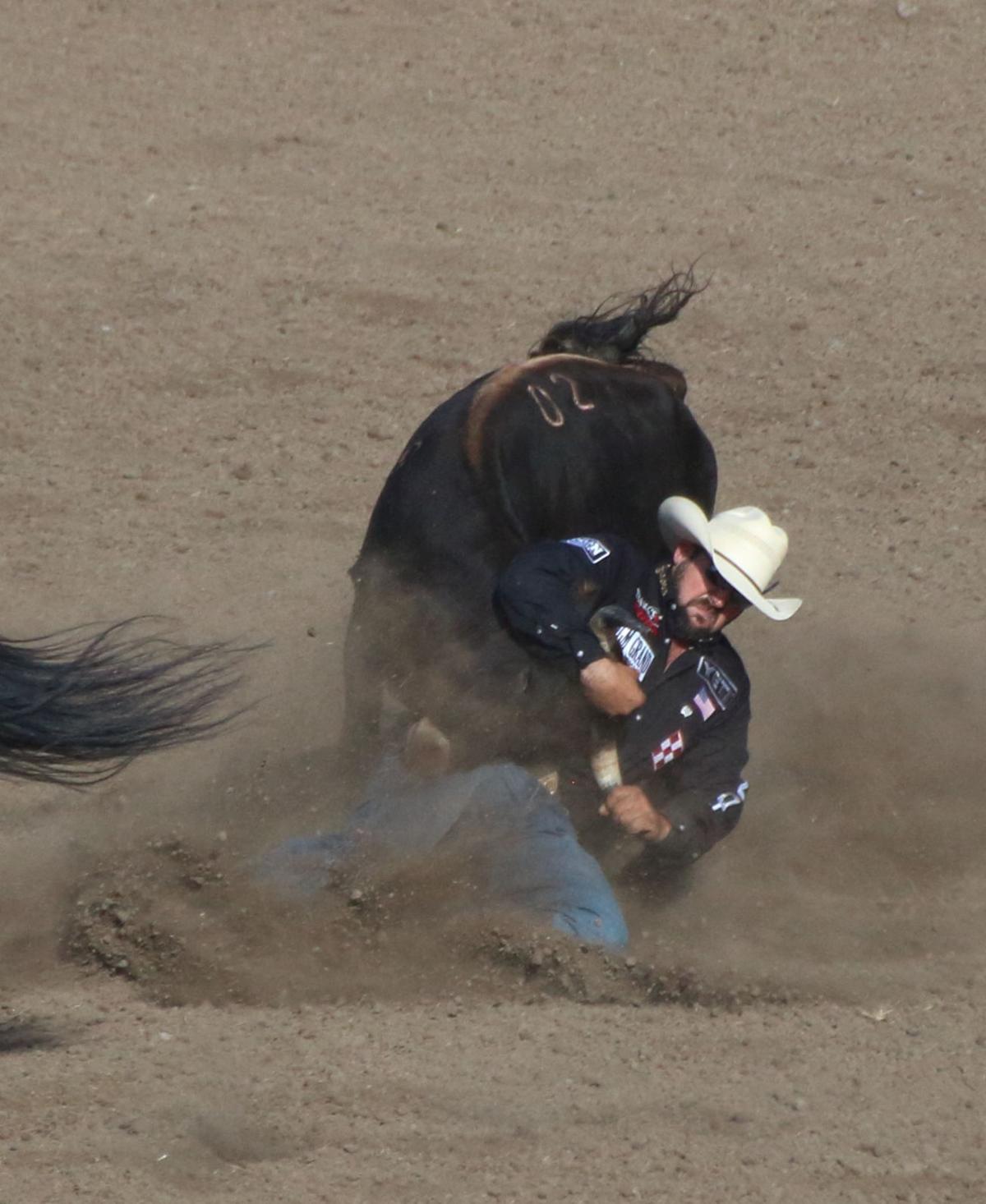 Stonyford Rodeo