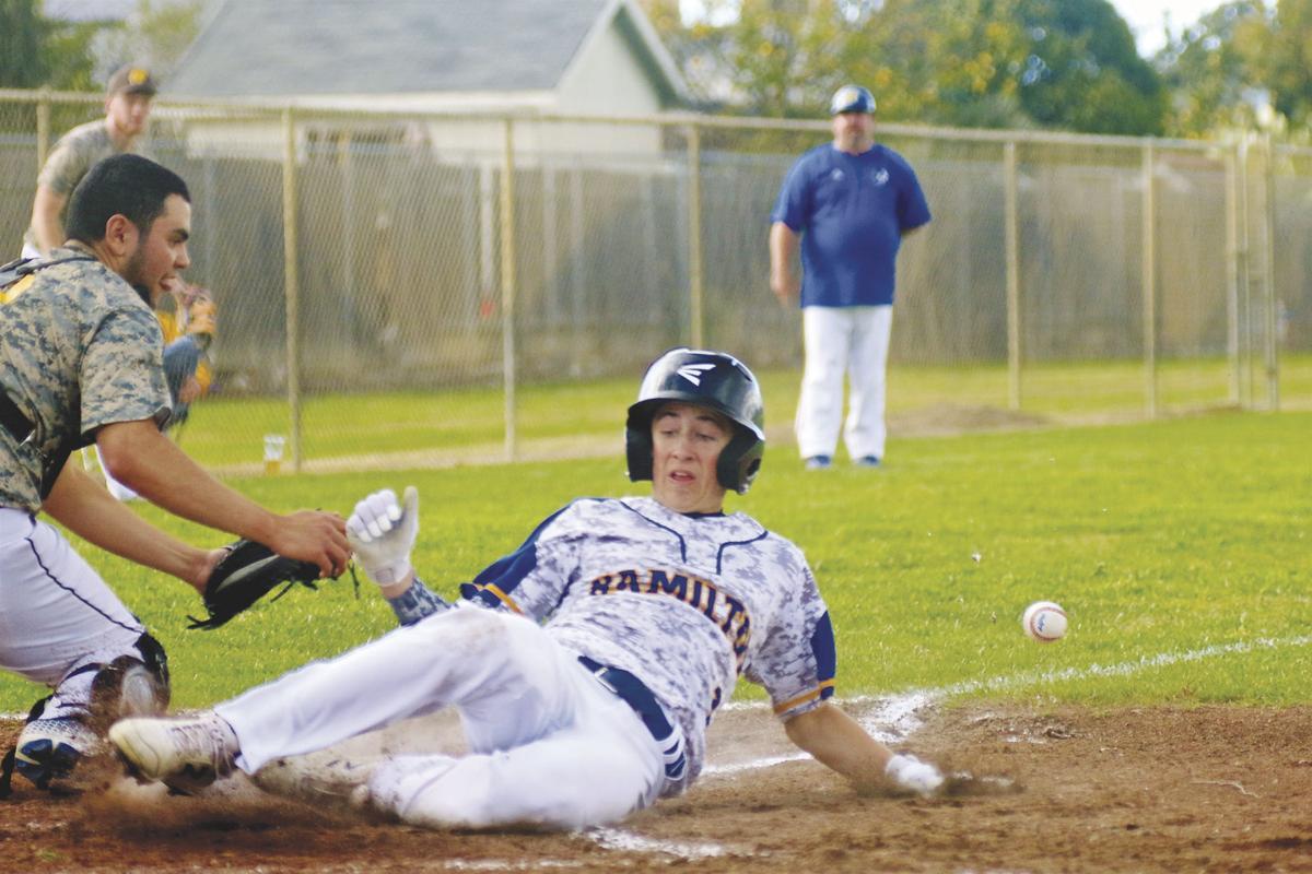 Hamilton City Baseball