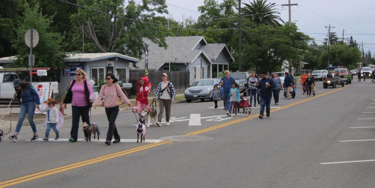 Wheatland Pet Parade