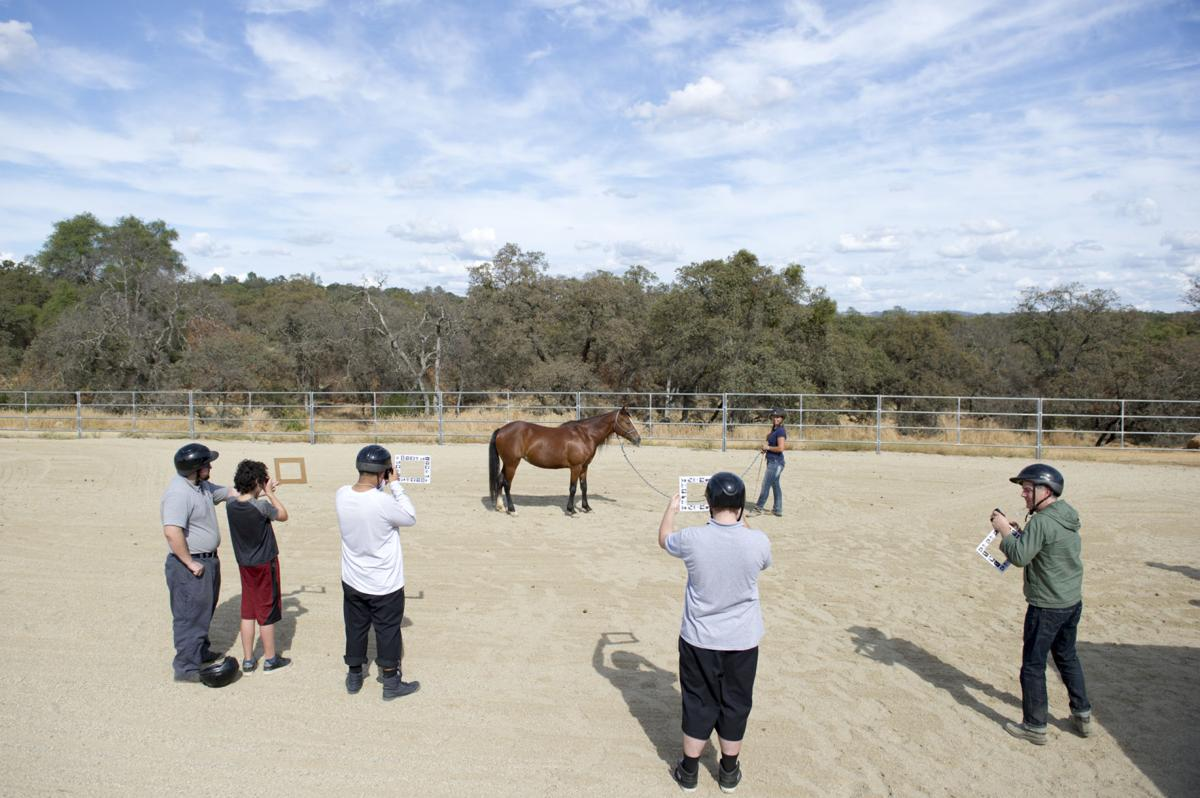 Blue Oaks Center for Equestrian Arts and Education