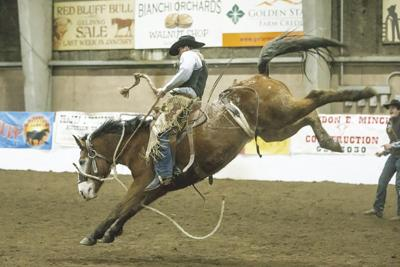 Ranch Rodeo offers real cowboy action