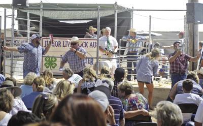 Livestock auction goes virtual