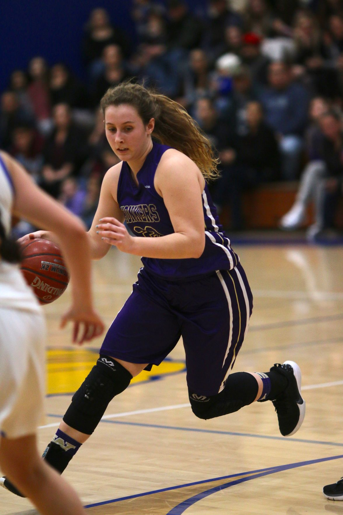 Willows Basketball