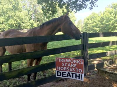 Milton horse owners concerned over July 4 fireworks (copy)
