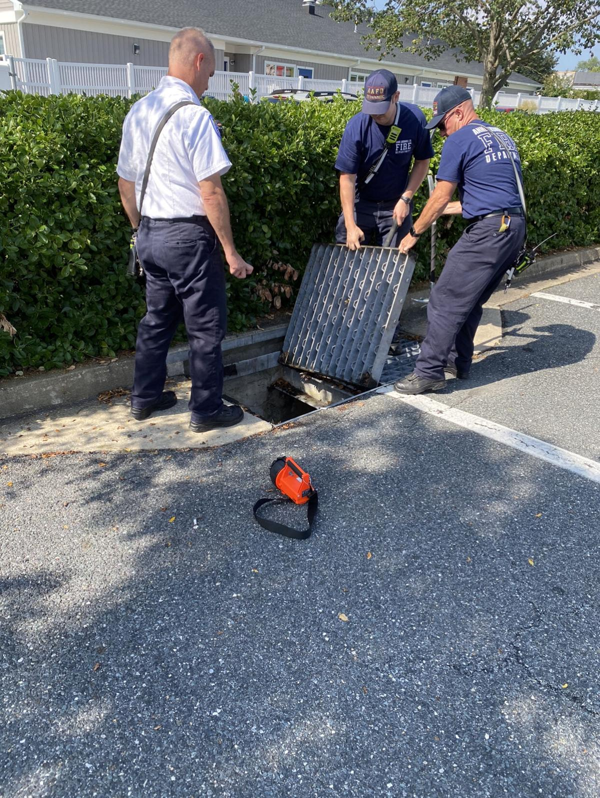 AA County Firefighters Respond For Duckling Rescue
