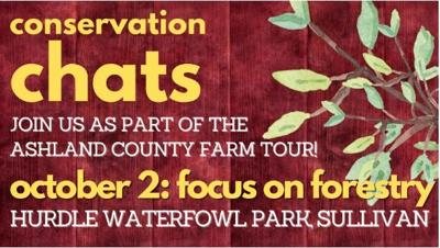 Focus on Forestry Tours