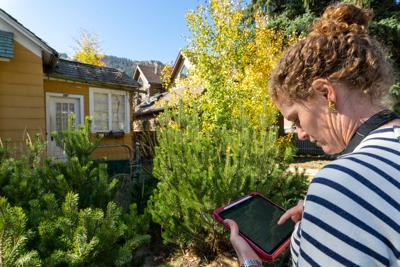 City of Aspen updating inventory of historic homes