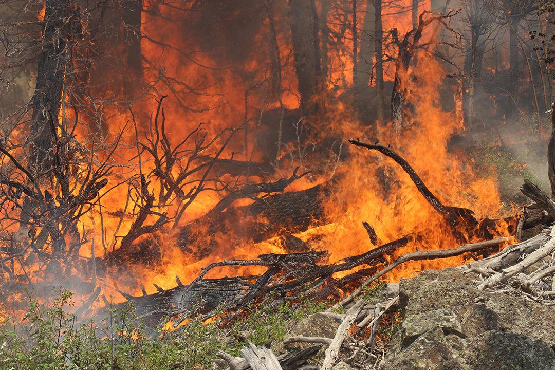 Photos: Inside the Lake Christine Fire