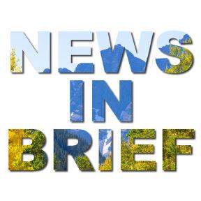 news brief logo