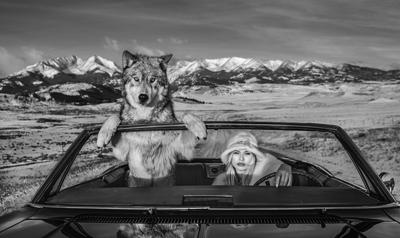 David Yarrow-Once Upon a Time in the West