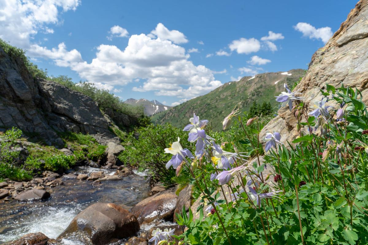 The Independence Pass Foundation: 30 years of environmental stewardship