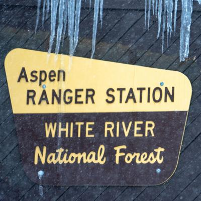 181231_USForestService3_CT.jpg