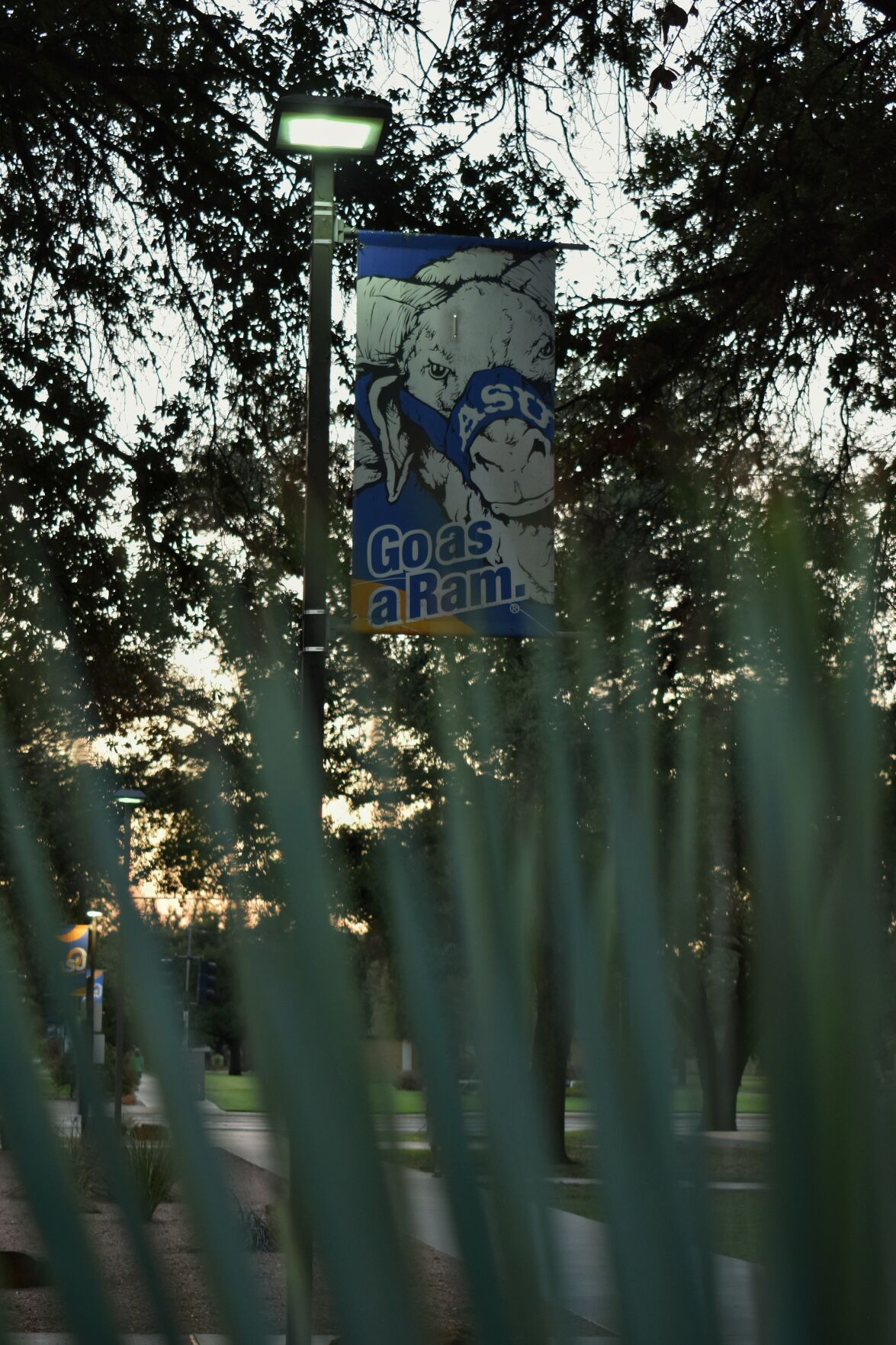 """""""Go as a Ram"""" campus sign"""