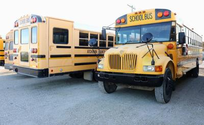 Bus bus bus