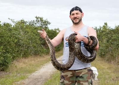 David Steen holds a python his team captured at the Python Challenge in Florida