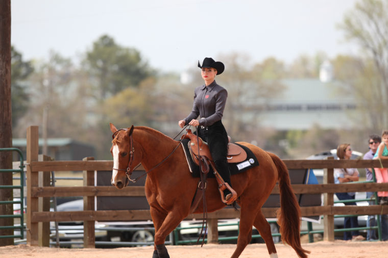 Sec Championship Au Equestrian The Auburn Villager Sports