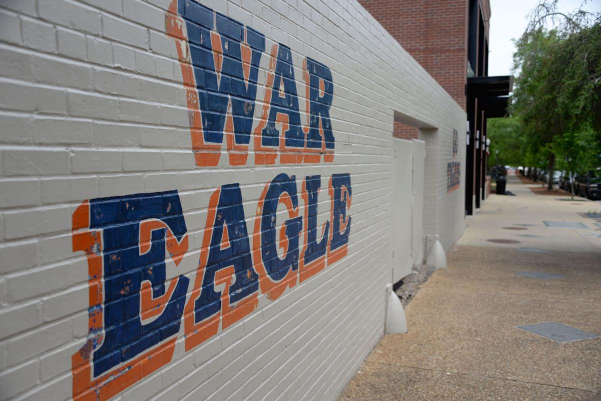 War Eagle Mural