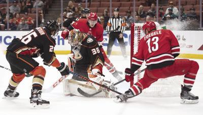 Hurricanes Ducks Hockey