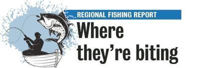 Regional Fish Report
